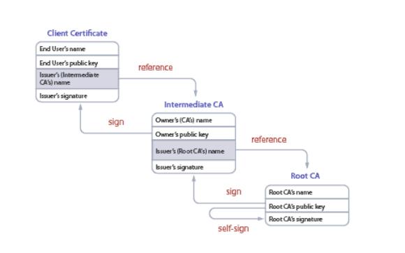 server certificate trust chain